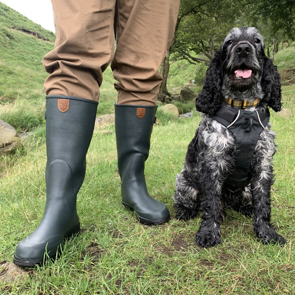 Hound boots with dog